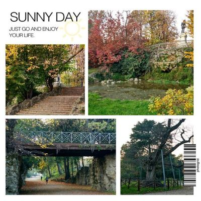 Парк Giardini Indro Montanelli - очень осенний и красивый. Здесь пруд, крошечные лесенки вникуда и планетарий:) Как везде в Милане, море детей и собак:) #giardini #giardiniindromontanelli #milan #milano #italia #italy #autumn #park #leaves #stairs #bridge