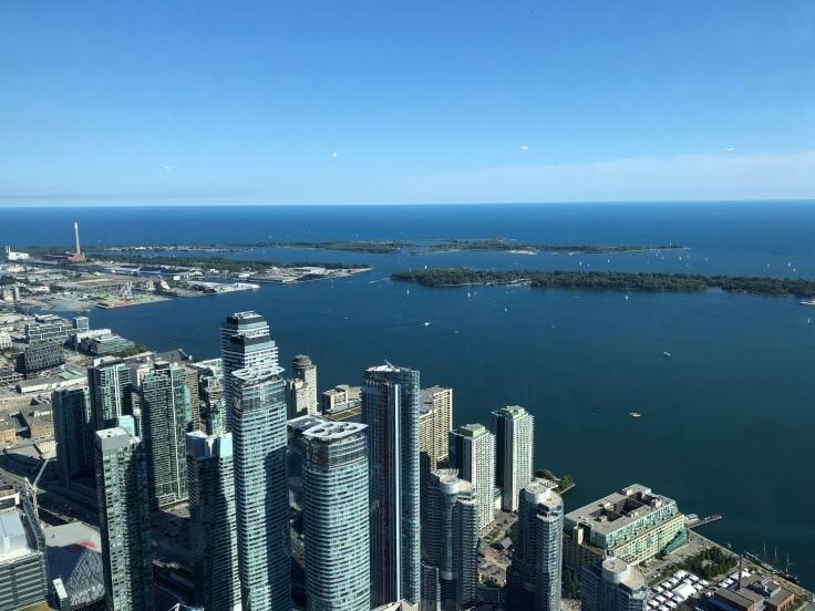 CN tower вид с высоты 350 м